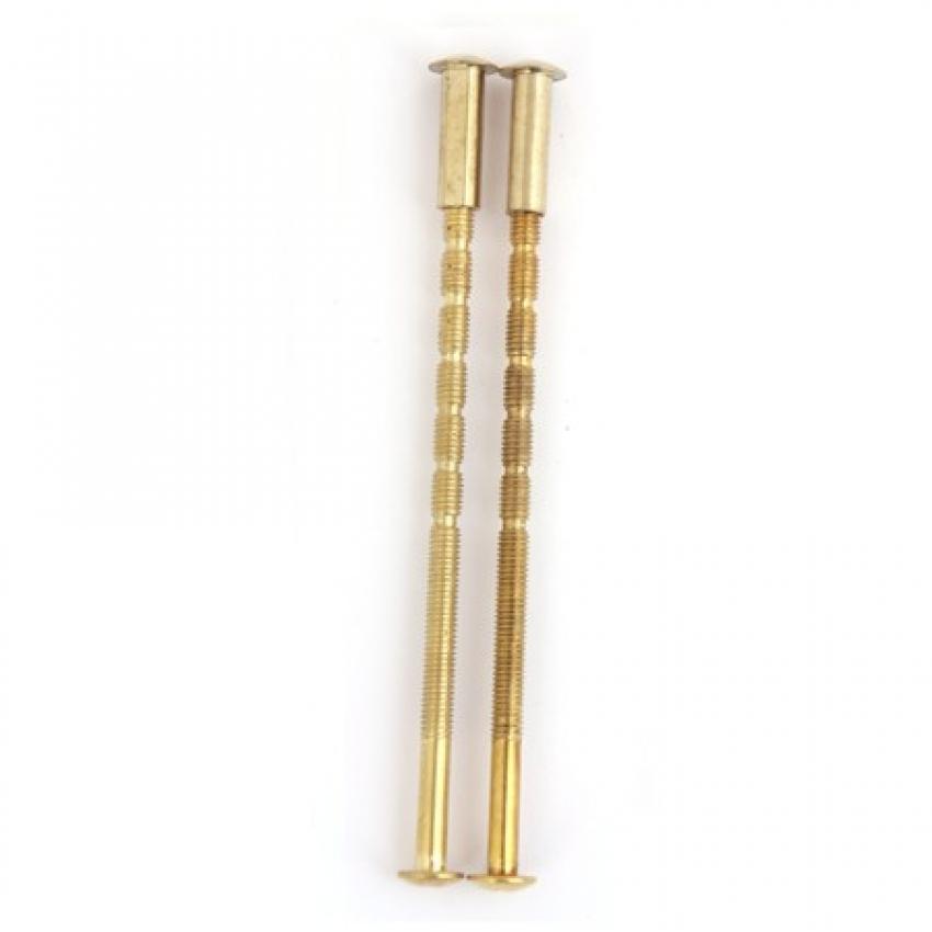 Стяжка винтовая APECS SCR-M6-120-20-G (золото, 2 шт.)